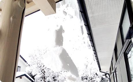 風・ひょう・雪災
